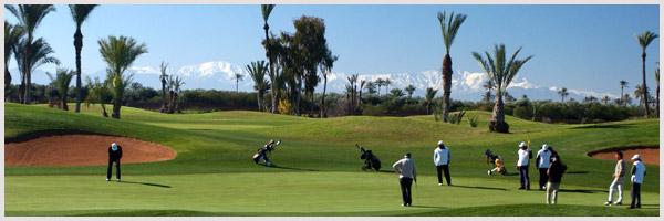 Almelkis Golf