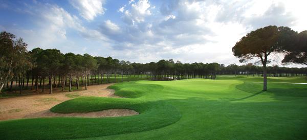 montgomerie-maxx-royal-golf