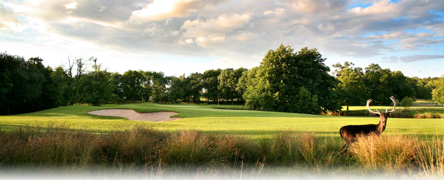 Marriott Golf - £99