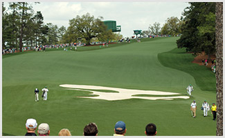 The Tenth Hole at Augusta - Camellia